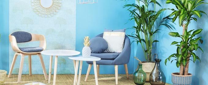 potiron paris magasin d 39 usine. Black Bedroom Furniture Sets. Home Design Ideas
